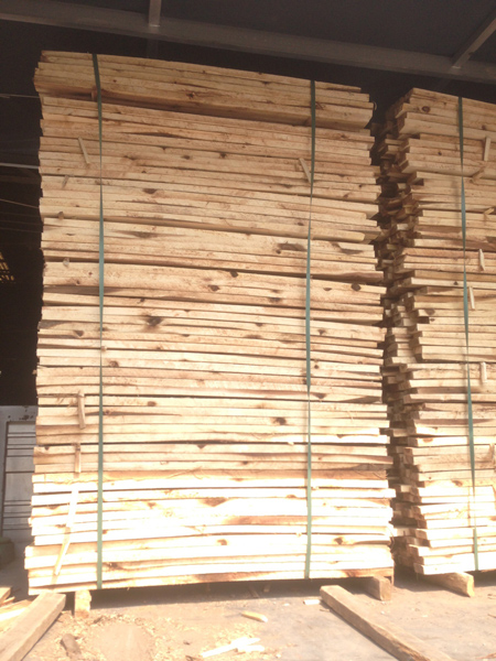 Phôi gỗ tràm